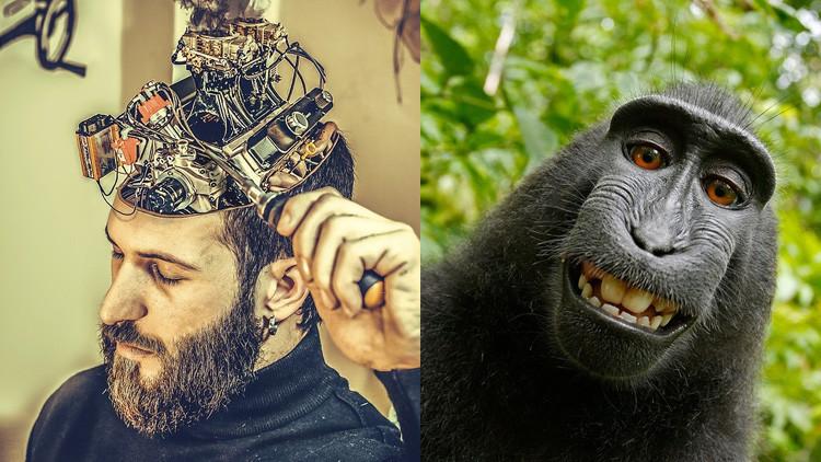 Los cerebros del ser humano y el chimpancé son más diferentes de lo que creíamos