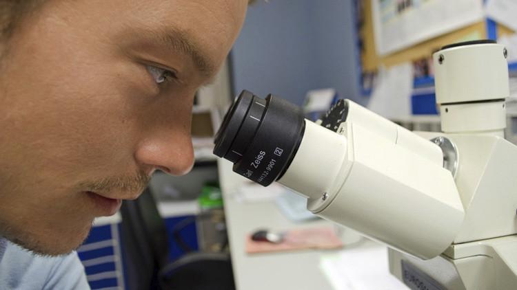 Foto: Hallan lo que podrían ser los primeros organismos multicelulares de la Tierra