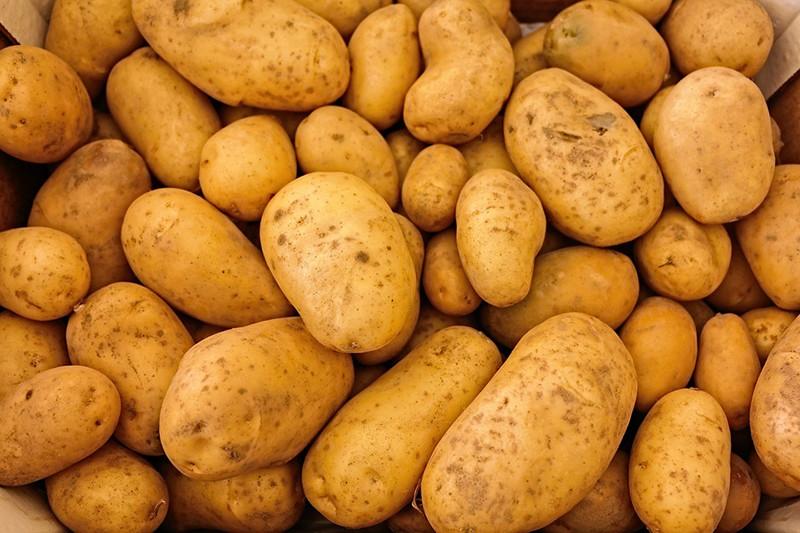 10 alimentos naturales que podr an matar rt - Productos para matar ratones ...