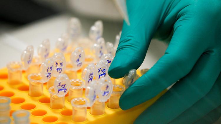 Logran eliminar por primera vez la infección del VIH en ratones 'humanizados'