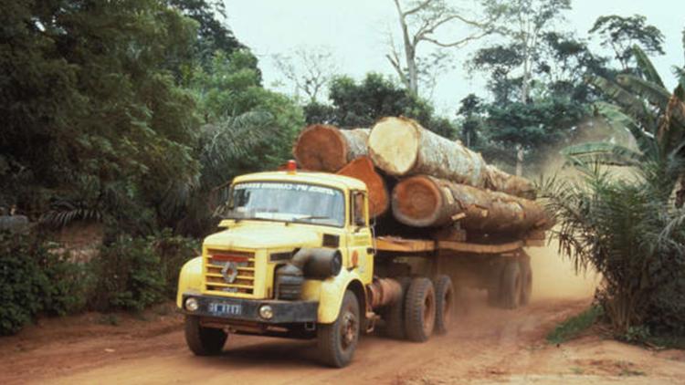 """WWF recibe el premio al """"mejor lavado de imagen ecológico del año"""""""