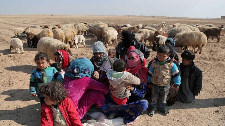 Siria defiende la propuesta de Rusia sobre las zonas de distensión del conflicto