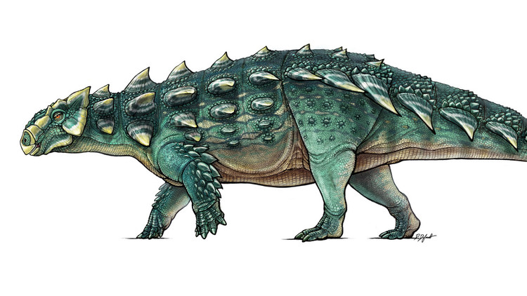 ¿Un dragón de 'Juego de Tronos'?: Hallan un fósil de dinosaurio al que se le ve la cara (Foto)