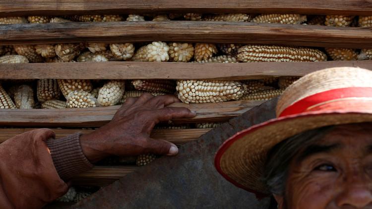 México: Aumenta la economía informal, que ya ocupa casi al 60% de los trabajadores