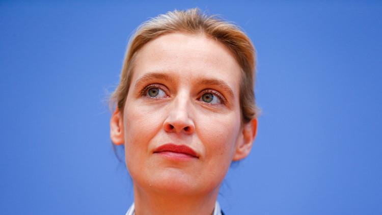 "Un tribunal alemán defiende que se califique de ""zorra nazi"" a una líder ultraderechista"