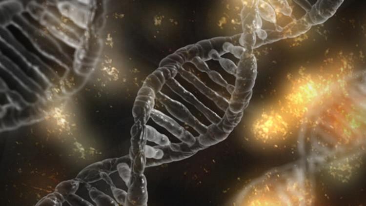 Descubren 40 genes nuevos relacionados con la inteligencia humana