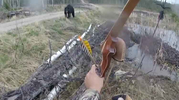 Oso ataca a cazador y éste sobrevive — Escalofriante