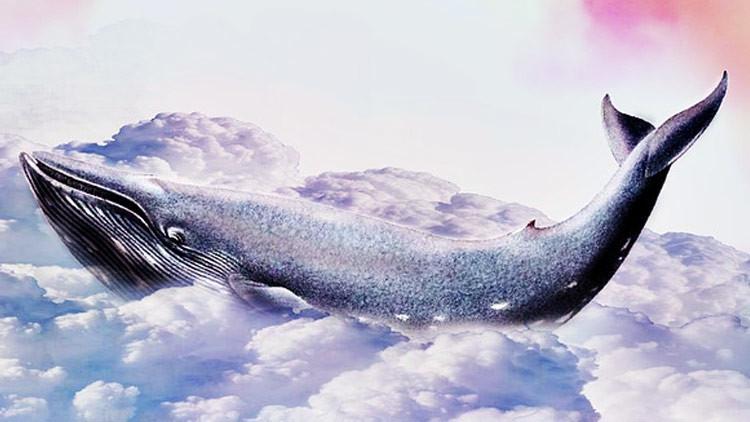 El virus de 'La ballena azul': cómo el juego suicida se propaga por el mundo