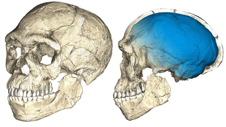 Nuestra historia se reescribe: encuentran los fósiles de Homo sapiens más antiguos jamás vistos