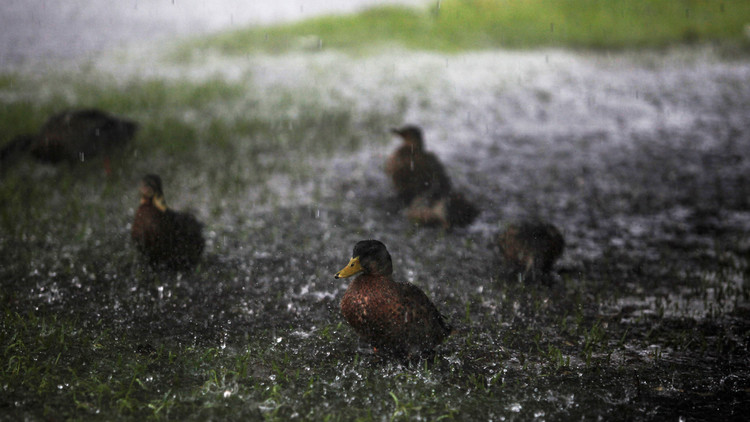 La NASA advierte de un futuro poco común para las zonas tropicales