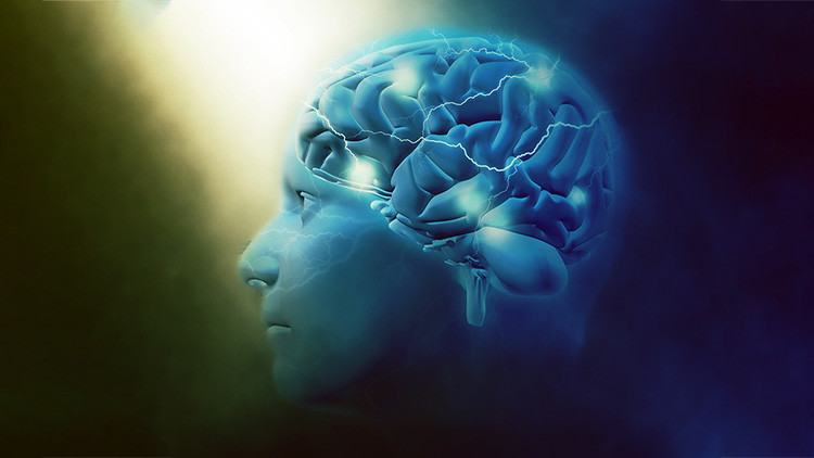 Científicos descubren un universo multidimensional en nuestro cerebro (VIDEO)