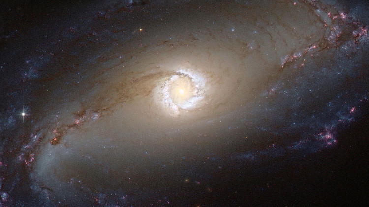 ¿Seremos testigos? Calculan cuándo y dónde se encontrará vida extraterrestre