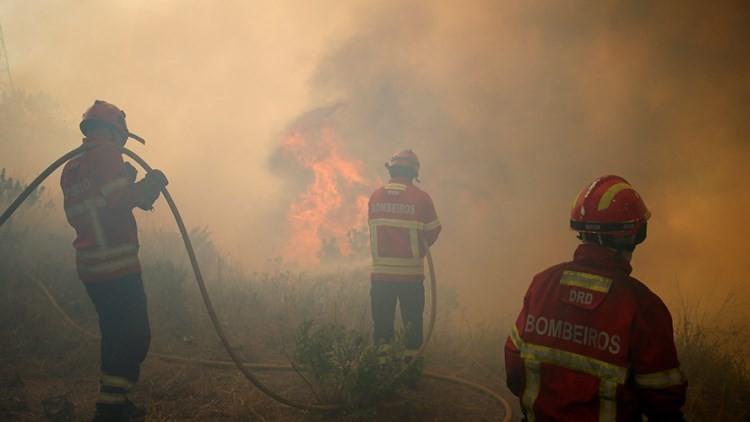 El infierno que ha dejado el incendio en Portugal (FOTOS DE SATÉLITE ANTES Y DESPUÉS)