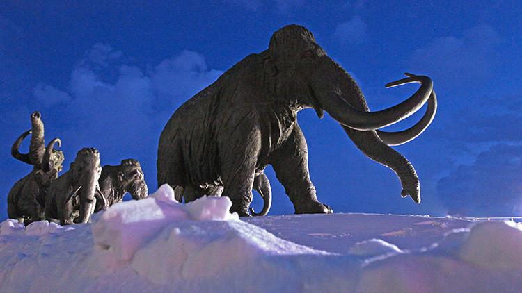 ¿Vuelve la Edad de Hielo?: Uno de los fundadores de PayPal invierte dinero para revivir un mamut