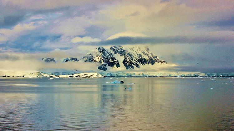 """FOTOS: Biólogos descifran la """"decoración navideña del infierno"""" encontrada en la Antártida"""
