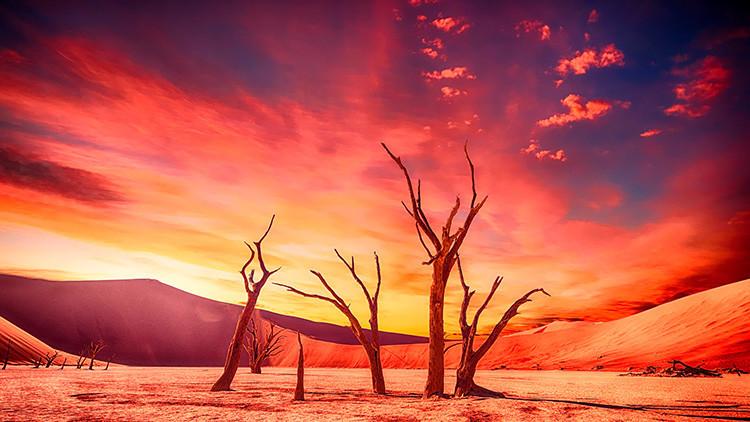 ¿Qué será de la humanidad? La Tierra agotará sus recursos anuales en cuestión de días