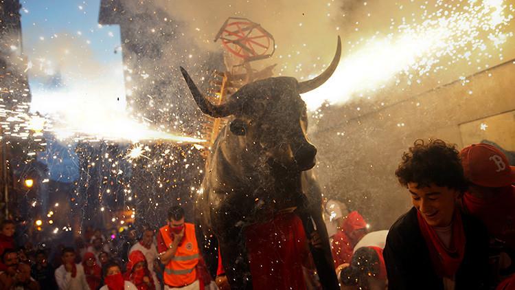 FUERTES IMÁGENES: Un toro muere al impactar contra el pilón en España