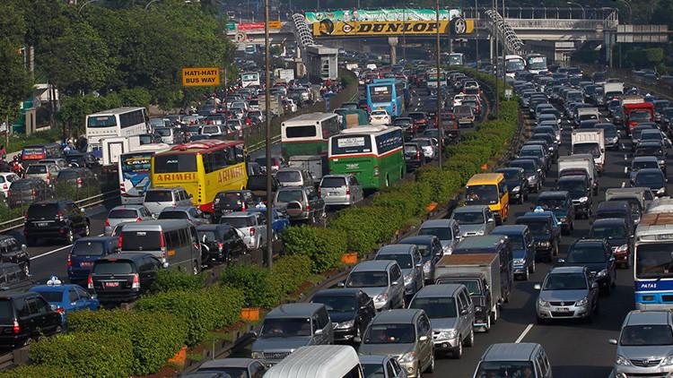 Estudio: Conducir con frecuencia puede afectar a la inteligencia
