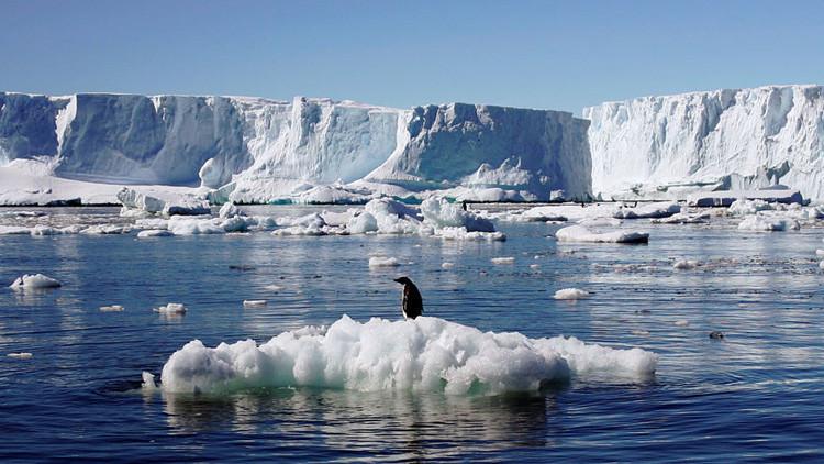 Importante hallazgo: Descubren en la Antártida unas bacterias 'anti efecto invernadero'