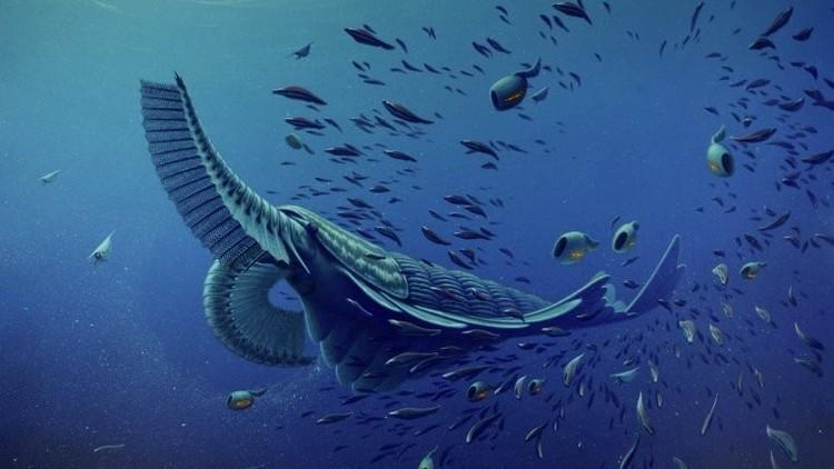 Descubren el misterio de la aparición de los primeros animales de la Tierra
