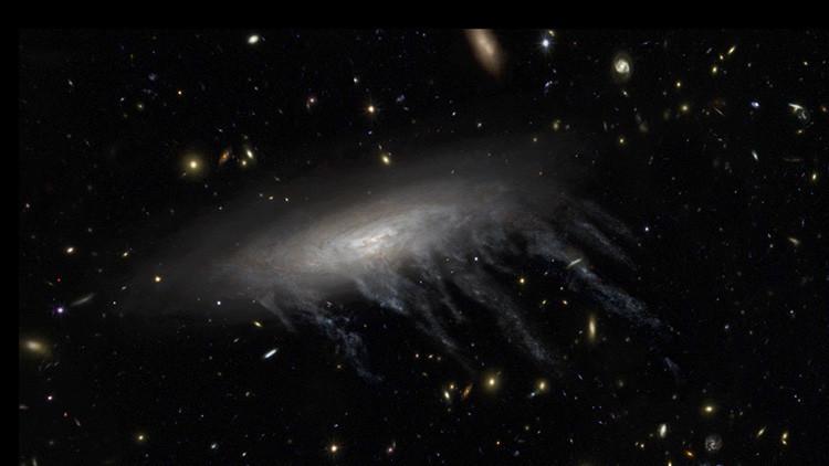 Así se 'alimentan' de las galaxias medusa los agujeros negros