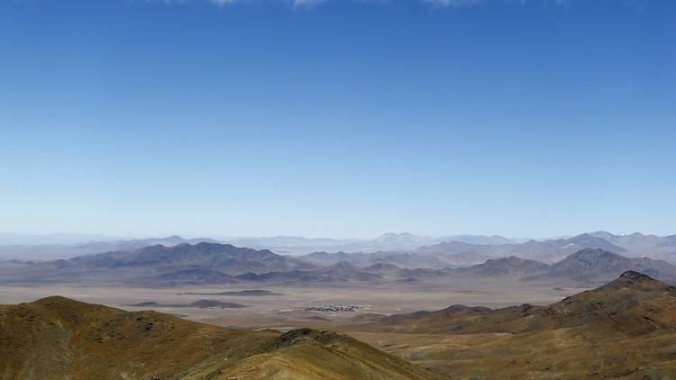 Jardín florido: Así florece Atacama, el desierto más árido del mundo (FOTOS)