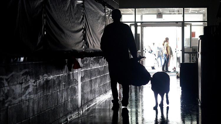 FOTO: Un ingenioso perro camina con una bolsa de comida luego del paso del huracán Harvey