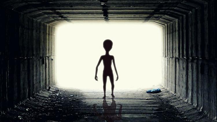 Astrobiólogos explican qué aspecto podrían tener los alienígenas