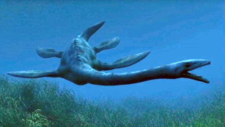 Un monstruo marino de 130 millones de años, nueva especie de dinosaurio acuático