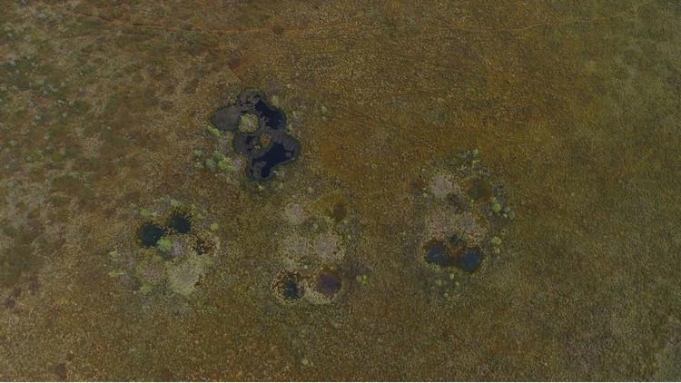 Detectan unos extraños cráteres en un área remota de la taiga rusa
