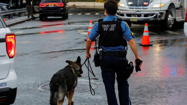 """""""Juntos contra Irma"""": Conmovedora foto de un oficial con un perro policía"""