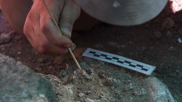 Chile: encuentran un cementerio precolombino en obras del Metro