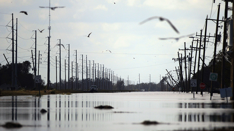 ¿Por qué las aves vuelan justo al ojo del huracán Irma?