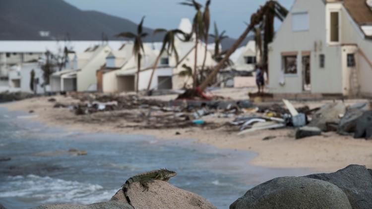Infierno en el paraíso: hambre y saqueo en la isla de San Martín arrasada por Irma (FOTOS)