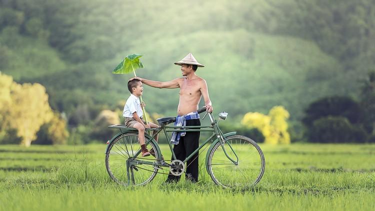 Desvelada la capacidad de los padres de influir en el género de sus vástagos