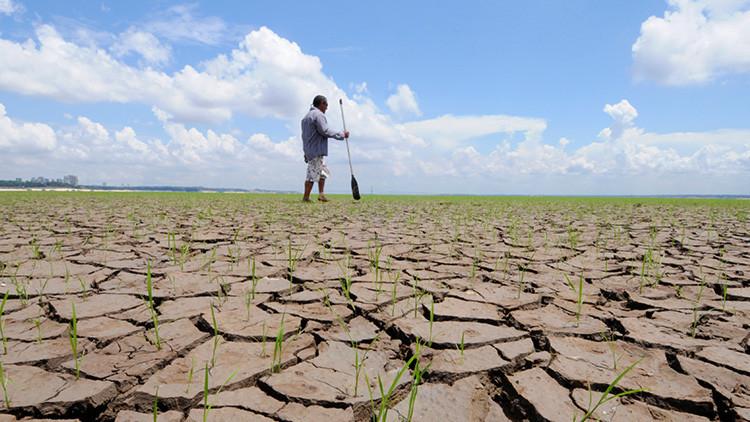 """""""Es real, somos nosotros, es serio"""": El mensaje viral de una científica sobre el cambio climático"""