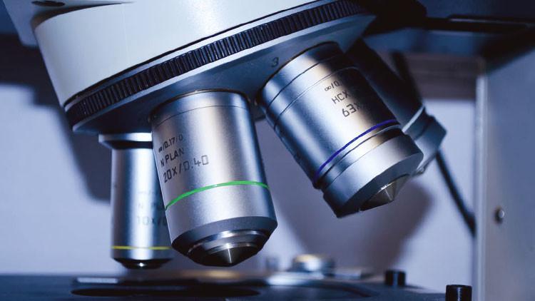 'Materia oscura microbiana': descuben nuevas formas de vida 'invulnerables'
