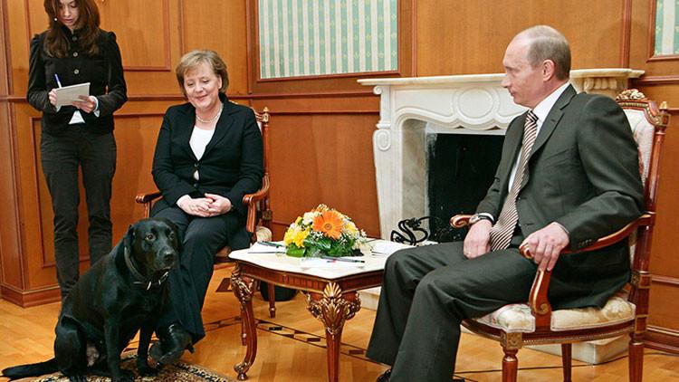 Un juego de palabras intraducible: un semanario alemán explica su insulto a Putin