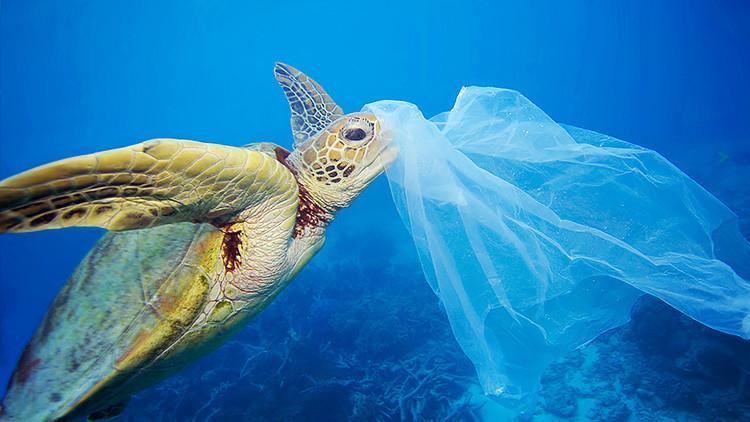 Chile será el primer país de América en prohibir las bolsas de plástico en zonas costeras