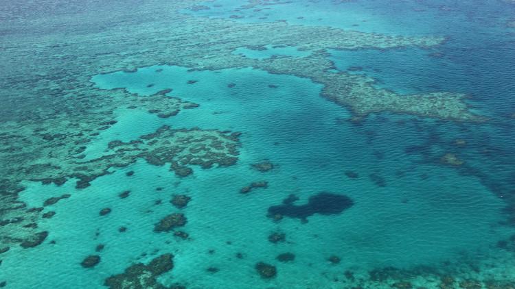VIDEO: Gracias a Google Maps descubren un nuevo agujero azul en plena Gran Barrera de Coral