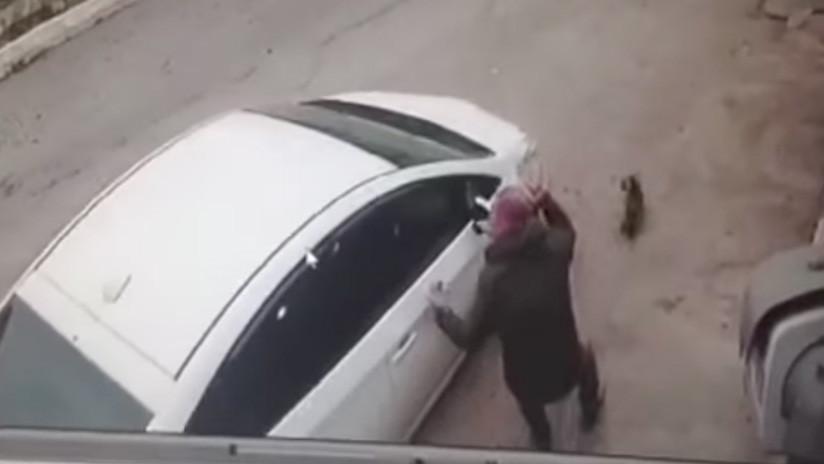 VIDEO INDIGNANTE: Una mujer atropella a un perro frente a su dueño