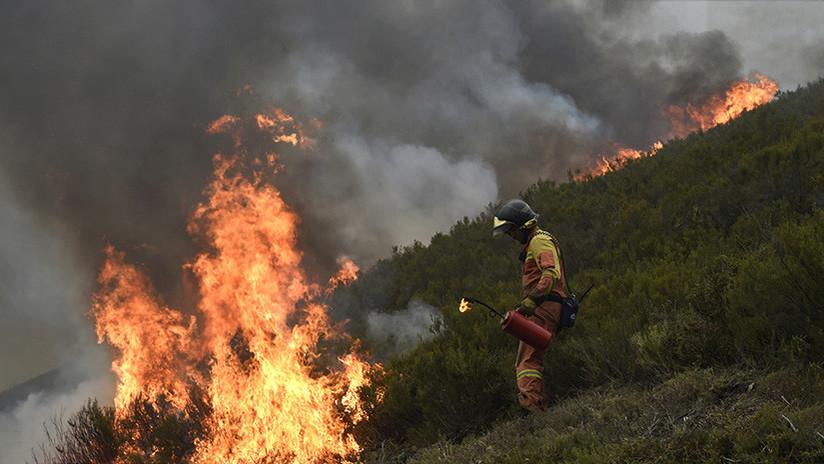 """""""Esta es la cara que se te queda"""": la carta de un español destrozado tras combatir los incendios"""