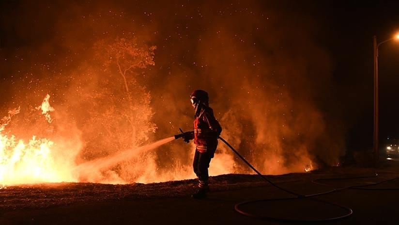 Portugal: Dimite ministra de Interior por la gestión de los incendios que suman más de 100 muertos