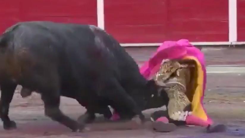 FUERTE VIDEO: Un torero sufre una cornada en el cuello y vuelve al ruedo para acabar la faena