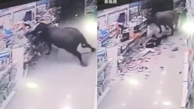 Un búfalo ataca a una embarazada en un supermercado en China (Fuerte video)