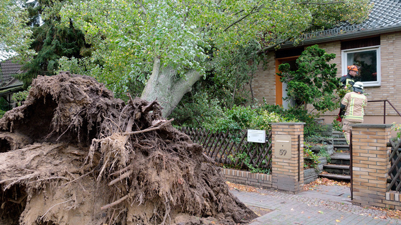 La tormenta Herwart sacude Alemania y provoca el estado de emergencia en Berlín (Fotos, Video)
