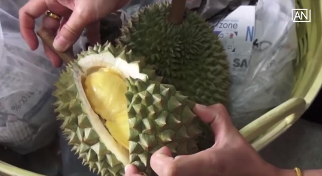Durián. En los países donde se consume es considerado un manjar y suelen llamarlo 'el rey de las frutas'.