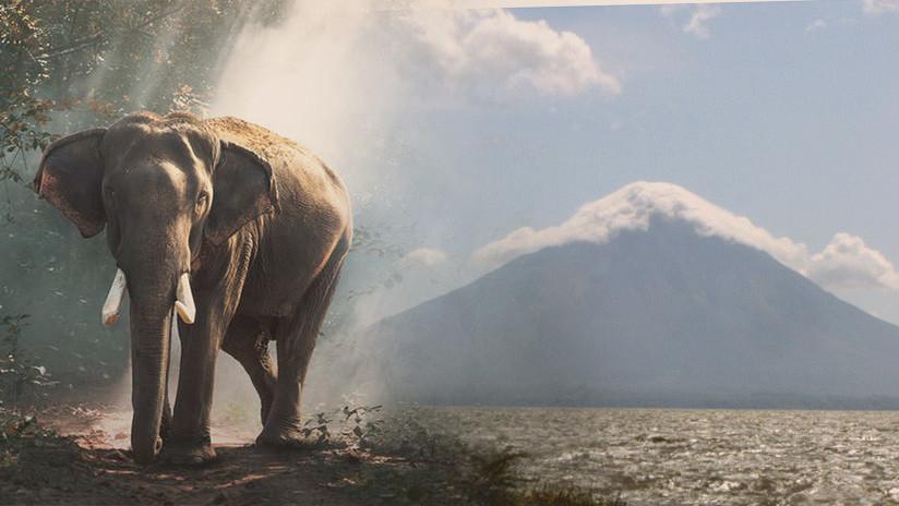 Un candidato electoral promete congelar el lago de Managua y llenar la ciudad de elefantes