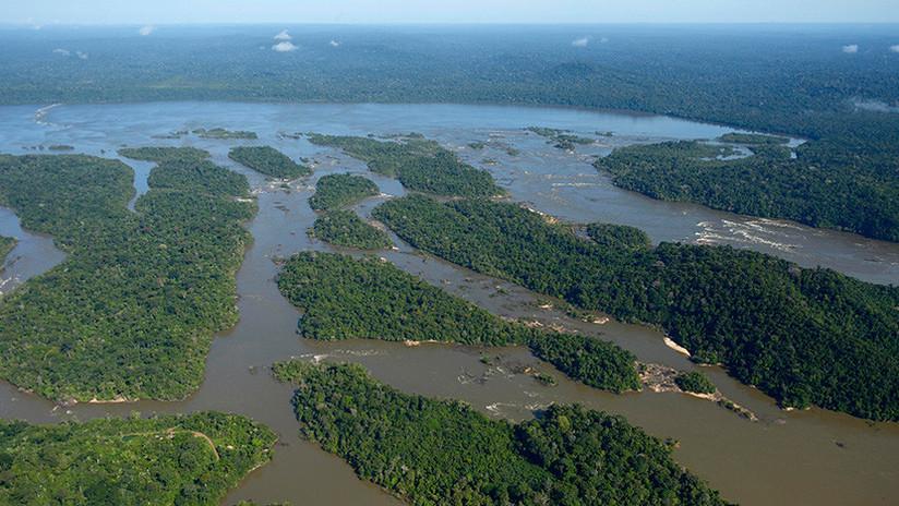 Encuentran en la jungla del Amazonas a una familia que huyó de unos piratas fluviales