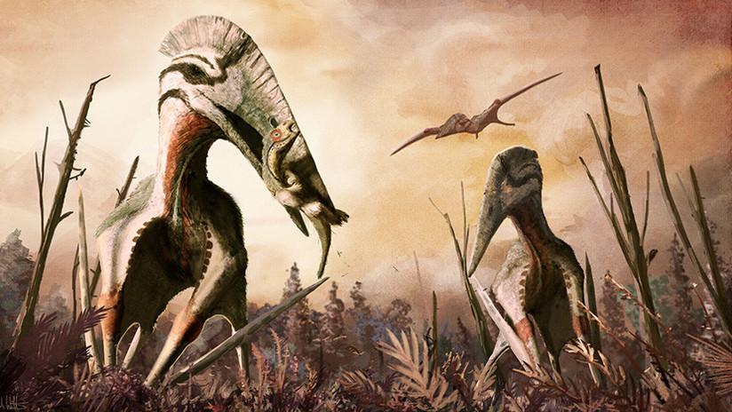 Descubren los restos de un predador volador gigante que se alimentaba de dinosaurios